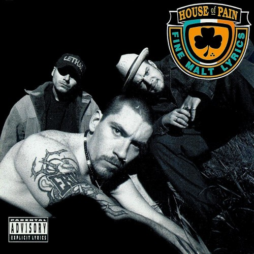 House Of Pain (LP)
