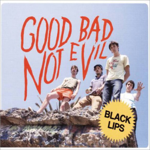 Good Bad Not Evil (LP)