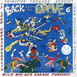 Back From The Grave Vol.6 (LP)