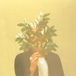 French Kiwi Juice (2LP)