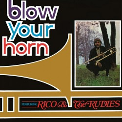 Blow Your Horn (LP) limited edition