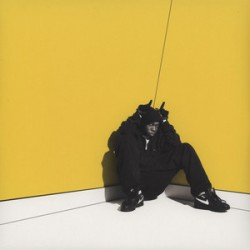 Boy In Da Corner (2LP) coloured