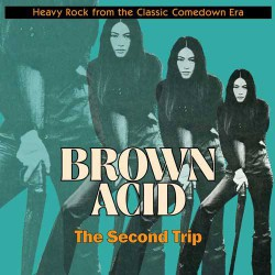 Brown Acid : The Second Trip (LP)