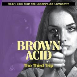 Brown Acid : The Third Trip (LP)