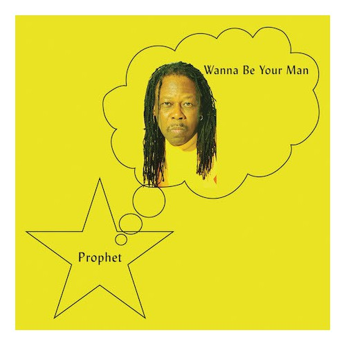 Wanna Be Your Man (LP)