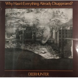 Why Hasn't Everything Already Disappeared? (LP)