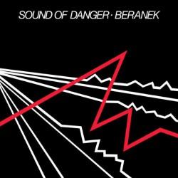 Sound Of Danger (LP)