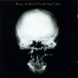 The Mind Is A Terrible Thing To Taste (LP)