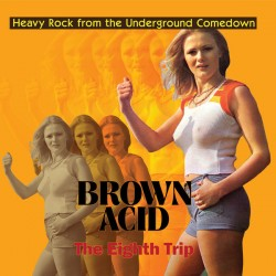 Brown Acid: The Eighth Trip (LP)