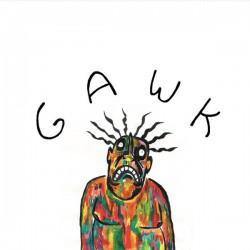 Gawk (LP) coloured edition