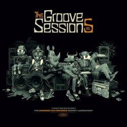 The Groove Sessions Vol.5 (2LP)