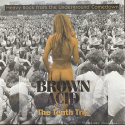 Brown Acid - The Tenth Trip (LP) coloured