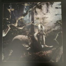 Feet Of Clay (LP)