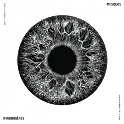 Musiques Imaginogenes Vol.1 (LP)