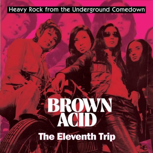 Brown Acid: The Eleventh Trip (LP)