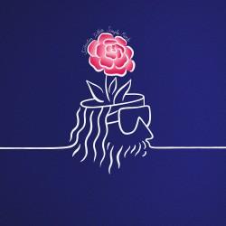Simple Mind (LP)