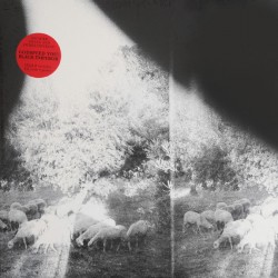 Asunder (LP)