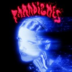 Paradigmes (2LP)