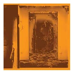 Present Tense (LP) coloured