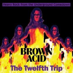 Brown Acid : The Twelfth Trip (LP)