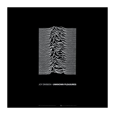 Unknown Pleasures (LP 180g)