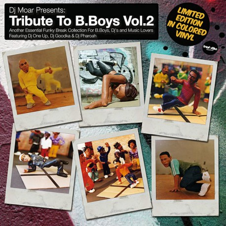 Tribute To B.Boys Vol.2 (LP)