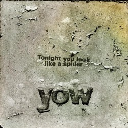 Tonight You Look Like A Spider (LP)