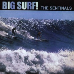Big Surf ! (LP)