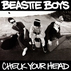 Check Your Head (2LP)