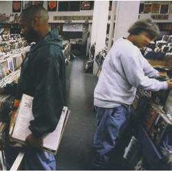 Endtroducing (2LP)