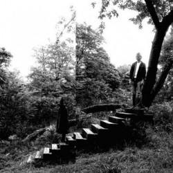 Timber Timbre (LP)